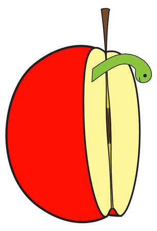 half apple: Half Apple with Insect Illustration