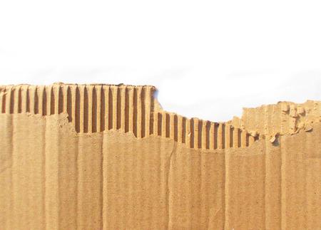tattered: Tattered Cardboard on White