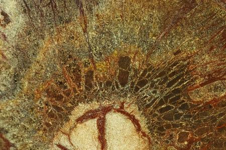 scruffy: Scruffy Marble Surface