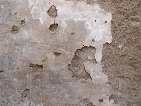 decayed: Decayed Wall