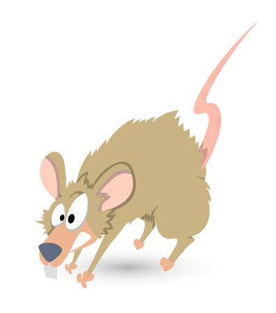 funny rat vector Vector