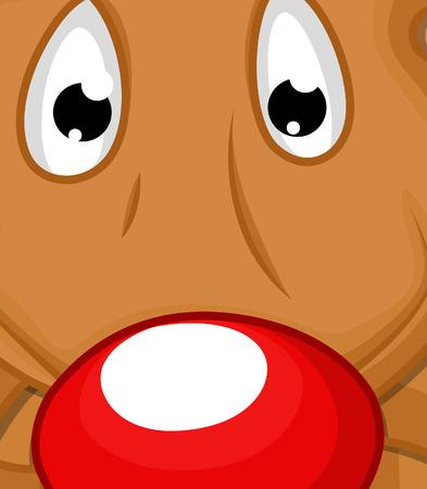 primer plano cara: Divertido cara asustada Animal Close Up