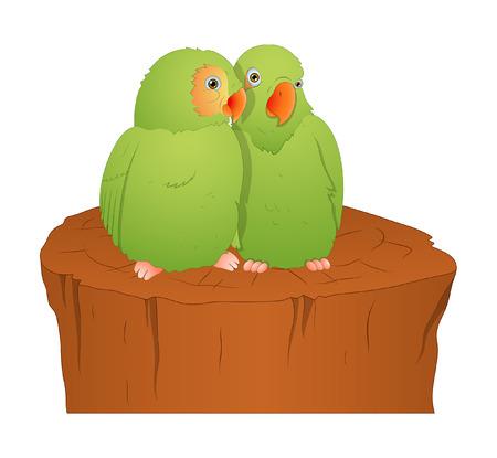 finch: Cartoon Parrot Birds Illustration