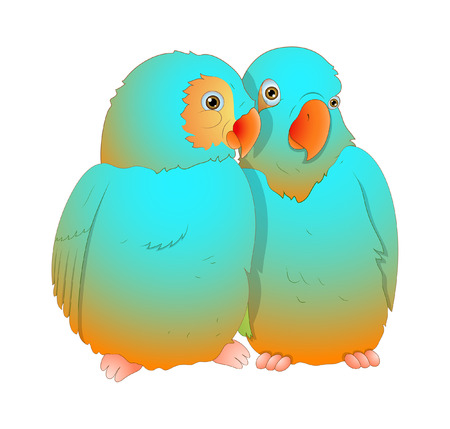 finch: Love Birds Vector