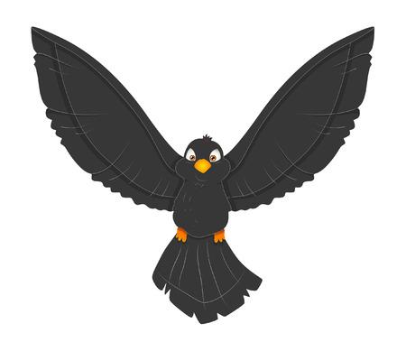 finch: Cute Black Bird Flying