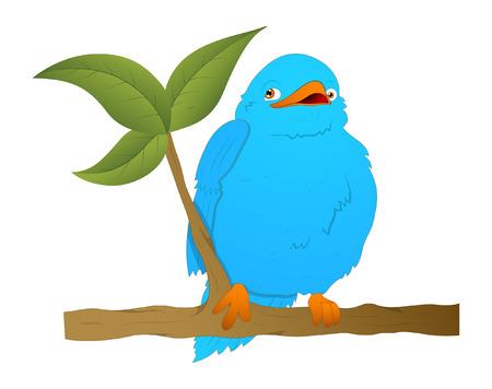 finch: Bird on Branch Vector