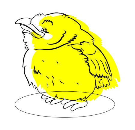 duif tekening: Kleine Vogel Tekening