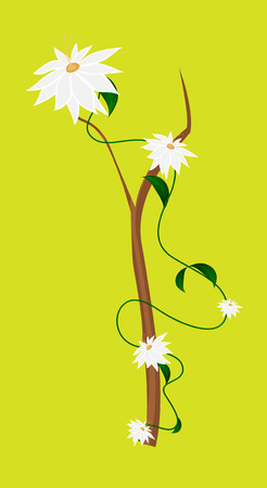 new year s day: White Flowers Branch Vector