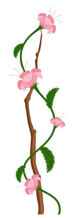 new year s day: Pink Flower Branch Vector Illustration