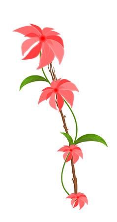 pink flower: Pink Flower Vector Branch