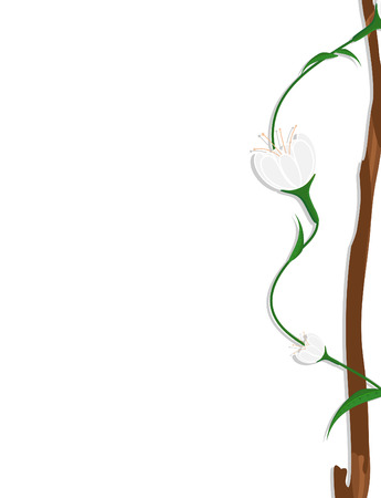 new year s day: White Flowers Branch Frame Banner Design Illustration