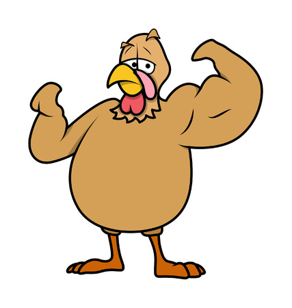 turkey bird: Muscular Turkey Bird Vector Illustration