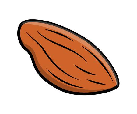 amande: Almond Nut Vecteur