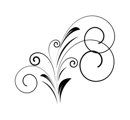 swirl: Decorative Swirl Floral Illustration