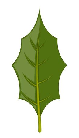 leaf: Leaf
