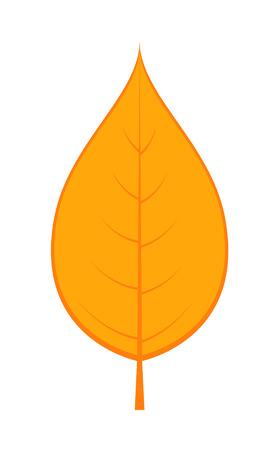 leaf shape: Leaf Shape