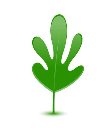 leaf shape: Leaf Shape Design
