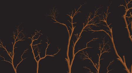 toter baum: Dead Tree Branches Shapes