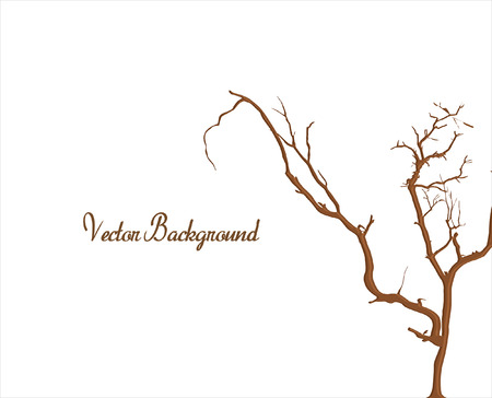 arbre mort: Dead Tree isol� sur blanc Illustration