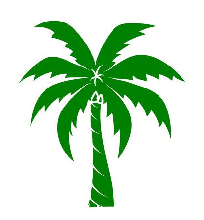 elongated: Gree Palm Tree
