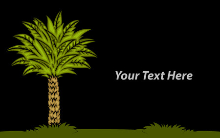 palm tree vector: Palm Tree Vector Banner