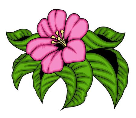 pink flower: Vector Pink Flower