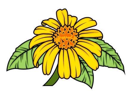 yellow blossom: Yellow Blossom Illustration
