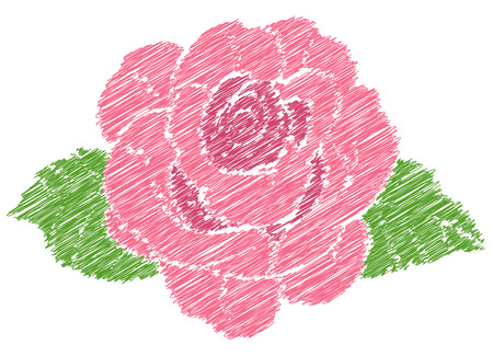 Rose Drawing Illustration