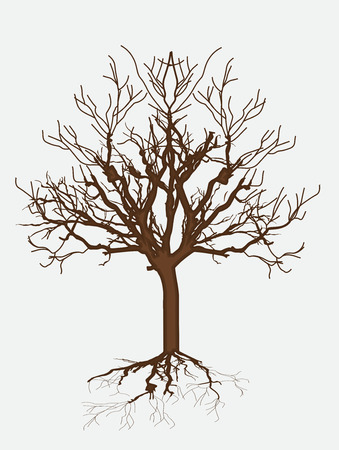 Dead Tree Drawing