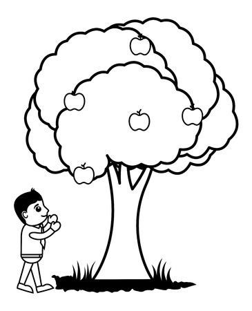 plucking: Man Plucking Fruits from Tree