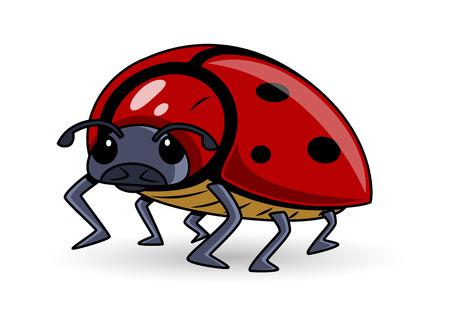 lady bug: Lady Bug Cartoon Vector Illustration