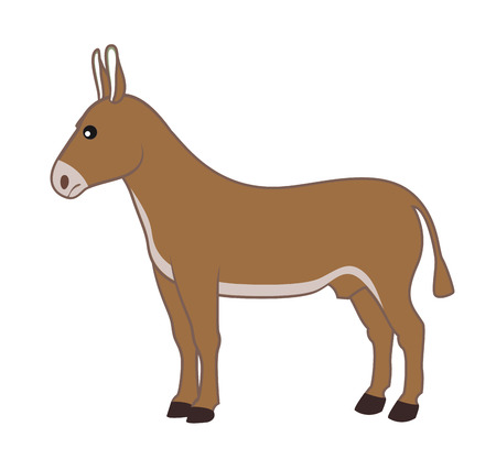 mule: Cartoon Donkey