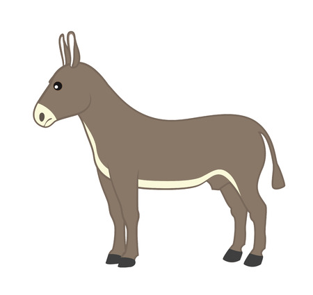 donkey: Cartoon Wild Donkey
