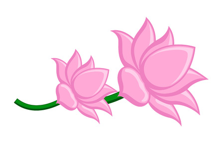 budding: Lotus Flowers Vector Clipart