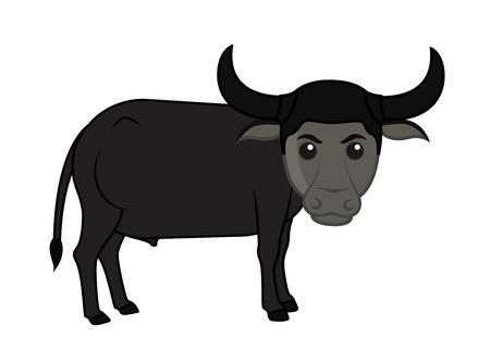 endangered species: Funny Cartoon Buffalo Illustration