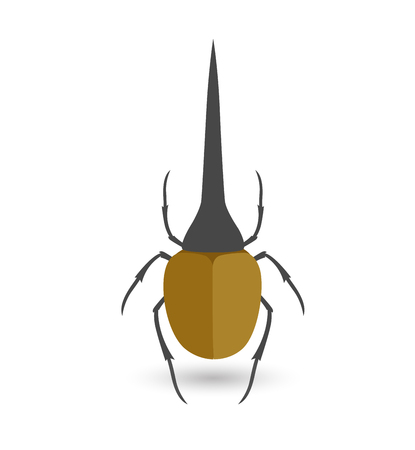 bloodsucker: Hercules Beetle Insect Vector Illustration