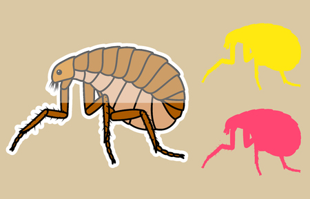 Comic Tick Insects Illustration