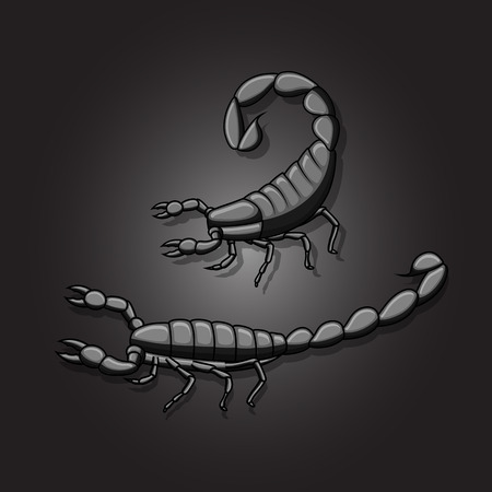 Black Fat-Tailed Scorpions