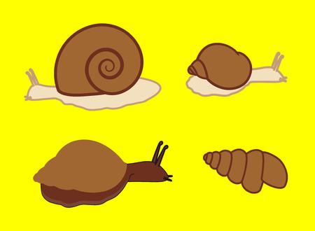 crawling creature: Wild Snails Illustration