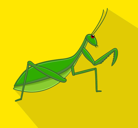 crawly: Mantid Insect Vector