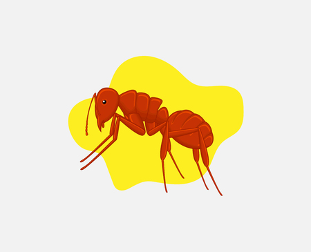 crawly: Fire Ant Vector