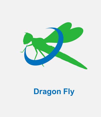 chorthippus: Dragonfly  Vector Illustration