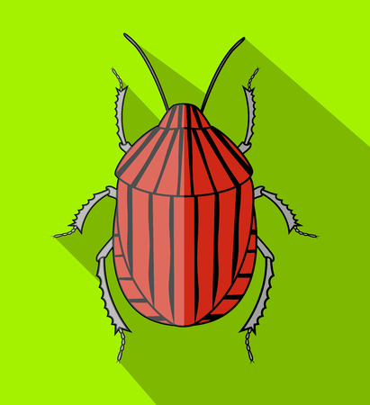 Red Striped Beetle Insect Vector Illustration