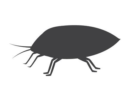 lice: Plant Lice Insect Vector Silhouette