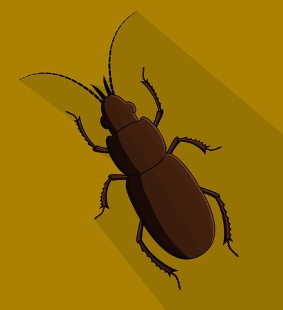 Creepy Totengraber Insect