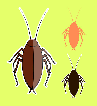 Cockroach Insects Vectors