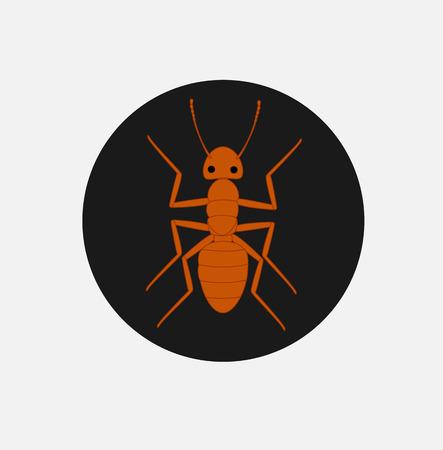crawly: Tiny Red Ant