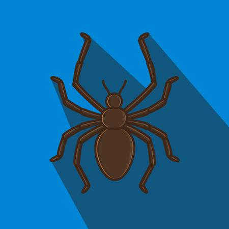 creepy: Creepy Spider