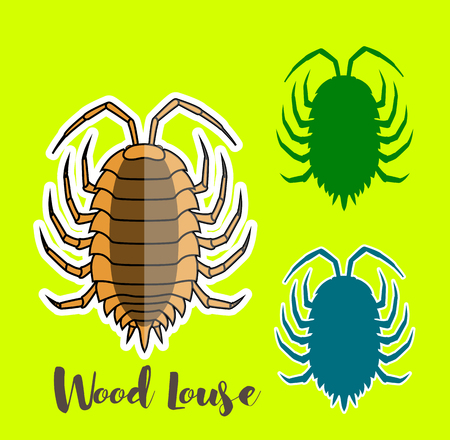 bloodsucker: Woodlouse Vector Insects