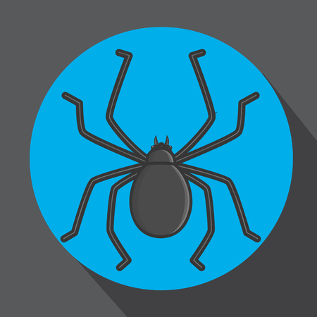 spidery: Tick Insect Vector